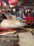 Geelvintonijn voor verkoop bij Surigao-vissenmarkt Mindano, Filippijnen Stock Afbeelding