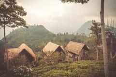 Geen berg med några hus för turister i lantligt landskap av Sri Lanka Arkivfoto