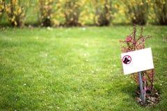 Geen honden op gras Stock Foto