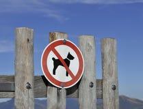 Geen hondteken stock afbeeldingen