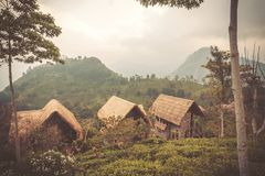 Geen mountains with some houses for tourists in rural landscape of Sri Lanka. Geen mountains with some houses for tourists in rural landscape of Sri Lanka Stock Photo