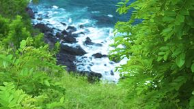 Geen plants growing in blue sea waves background breaking to rocky cliff. Rough ocean waves splashing with foam to stony. Shore on island. Wild nature landscape stock video