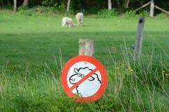 Geen toegestane sheeps Royalty-vrije Stock Afbeeldingen