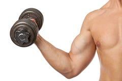 Geerntete Ansicht eines muskulösen Mannes, der einen Dumbbell anhebt stockfotografie