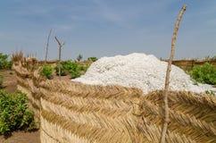 Geerntete Baumwolle, die oben in der traditionellen Reedlagerung unter dem blauen afrikanischen Himmel in Benin angehäuft wird stockfotografie