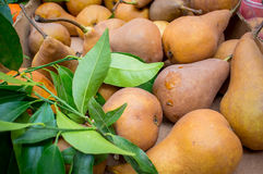 Geerntete Birnen bereit zum Verkauf auf freiem Markt Lizenzfreie Stockfotografie