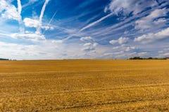 Geerntete Weizenfelder und drastischer blauer Himmel im Juli, Belgien Lizenzfreie Stockbilder
