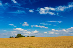 Geerntete Weizenfelder und drastischer blauer Himmel im Juli, Belgien Stockfotografie