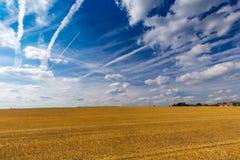 Geerntete Weizenfelder und drastischer blauer Himmel im Juli, Belgien Stockfoto