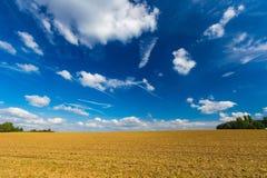 Geerntete Weizenfelder und drastischer blauer Himmel im Juli, Belgien Stockbild