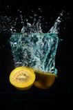 Geernteter Kiwifruit im Wasser Lizenzfreie Stockfotos
