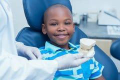 Geernteter Zahnarzt, der Jungenprothesenzähne zeigt Lizenzfreies Stockbild