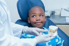 Geernteter Zahnarzt, der Jungenprothesenzähne zeigt Lizenzfreie Stockfotografie