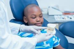 Geernteter Zahnarzt, der Jungenprothesenzähne zeigt Stockfotos