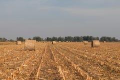 Geerntetes Feld mit Strohballen im Herbst Stockbild