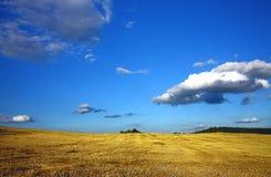 Geerntetes Feld und Wolken lizenzfreies stockbild