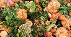 Geerntetes Gemüse Staplungsiat ein Herbsttag lizenzfreies stockfoto