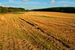 Geerntetes landwirtschaftliches Feld Lizenzfreie Stockbilder