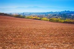 Geerntetes landwirtschaftliches Feld auf der Hügelbank Stockfotografie
