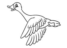 Free Geese Funny Birds Fly Cartoon Coloring Page Royalty Free Stock Photo - 144610725