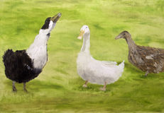 Geese oil painting. An oil painting showing three geese on green grass background Stock Images
