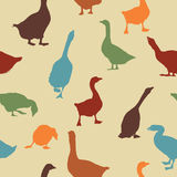Geese pattern. Seamless patern design with geese silhoueetes in colors Royalty Free Stock Image