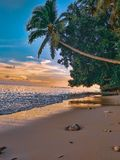 geest van het eiland royalty-vrije stock afbeeldingen