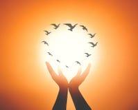 Geestelijke handen met vele vogels het vliegen stock afbeelding