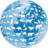 Gefährdete Tiere global Lizenzfreie Stockbilder