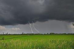 Gefährliche Blitze im Regen über grünem Feld Lizenzfreies Stockbild