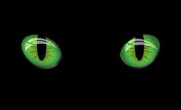 Gefährliche grüne Augen auf schwarzem Hintergrund Stockbild