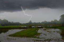 Gefährlicher Schlag des Blitzes von der dunklen Wolke über dem Feld Stockfoto