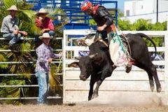 Gefährlicher Stier des Cowboys Reitauf Rodeo Lizenzfreies Stockfoto
