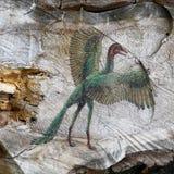 Gefährlicher Vogel Stockfoto