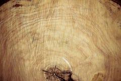Gefällter Baum-Stamm Weide, Abschluss oben Hölzernes Hintergrundholz rau Stockfoto