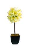 Gefälschte weiße Blumen Stockfotografie