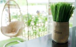 Gefälschtes Gras in einer braunen Tasche Lizenzfreies Stockbild