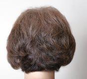 Gefärbt für braunes graues Haar Lizenzfreies Stockfoto