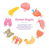 Gefühl-Fahnen-Karten-Kreis der Karikatur-inneren Organe lustiger Vektor lizenzfreie abbildung