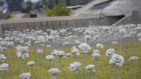 Geführte Blumenlichter