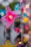 Geführte Lichter in Form von rosa Blumen Stockbilder