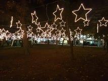 Geführte Weihnachtssterne an den Bäumen Stockfotos