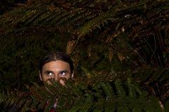 Gefahr im Wald stockbild