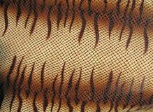 Gefahr snakeskin, braune Nahaufnahmebeschaffenheit, Lizenzfreies Stockfoto