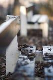 Gefallene Blätter auf der Bank im Winter Stockfotos