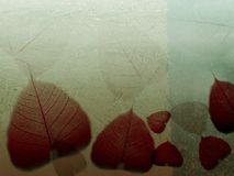 Gefallene Blätter der Kunstabbildung _ Lizenzfreie Stockfotos