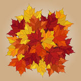 Gefallene Blätter des Vektors Herbst Stockfotografie