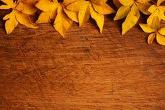 Gefallene Blätter - grunge Holzhintergrund Lizenzfreies Stockbild