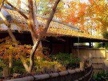 Gefallene Blätter und ein Japanisch-angeredetes Haus Stockbild