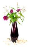Gefallene Blumenblätter Stockfoto
